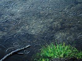 se protéger contre la pluie