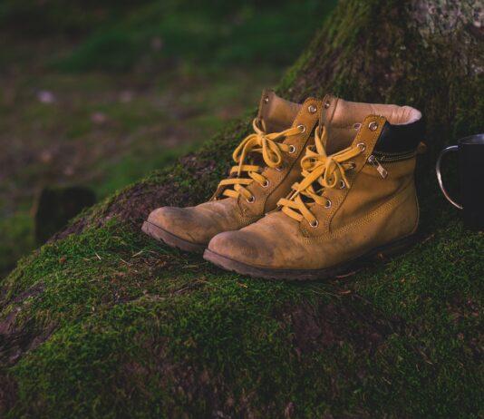 chaussures de randonnée hautes ou basses